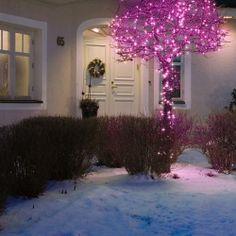 #kerstverlichting - Konstsmide LED Microsnoer