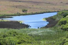 Milner Dam - 2nd Jan 2016 Cool Photos, River, Mountains, Nature, Outdoor, Outdoors, Naturaleza, Outdoor Games, Nature Illustration