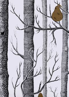 Woods and Pears wallpaper from Cole and Son - Woods & Pears ! New from Cole and Son - Contemporary Restyled