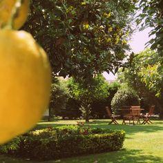 Excelente rincón para relajarse en el jardín!!