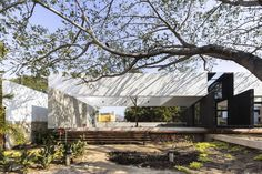 Gallery of The Tree House / AS Arquitectura - 1