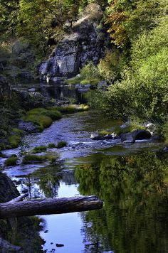 ✮ North Umqua River below Steamboat Falls in Southern Oregon