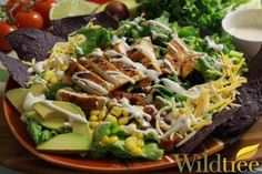 Wildtree's Grilled Chicken Taco SaladRecipe. Yum!!!  Substitute plain greek yogurt for the sour cream, and unflavored almond milk for the regular milk.