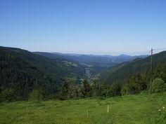 Elsass 2009