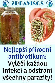 Detox, Diabetes, Fitness, Good Things, Plants, Ideas, Medicine, Turmeric, Plant