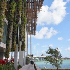 文化系マイアミ: 海辺の美術館ペレス・アート・ミュージアム・マイアミ開館