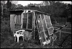 allotment shed (suit DIY) by fitzhughfella, via Flickr