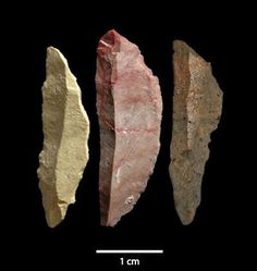 The Archaeology News Network: Small lethal tools have big implications for early modern human complexity Native American Tools, Native American Artifacts, American Indians, Indian Artifacts, Ancient Artifacts, Art Pariétal, Stone Age Tools, Early Humans, Archaeology News