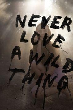 Never Love a Wild thing. From: TeenWolf.tumblr.com  Follow my tumblr: XoTeenWolfAddictionXo.tumblr.com :)