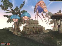 Morrowind. Netch Toro y Netch's hembras. Raras y venenosas criaturas que vuelan como globos.