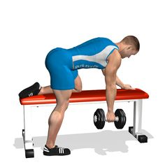 ONE ARM DUMBBELL ROW ON FLAT BENCH INVOLVED MUSCLES DURING THE TRAINING LATS