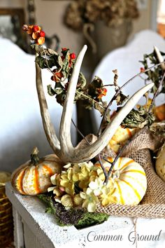 One of my favorite yearly posts would have to be the Outdoor Fall Tablescape that I have done for the last three years. Doing an outdoor tab...