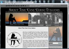 About Time Cane Corso has a BRAND NEW WEBSITE!   www.AboutTimeCaneCorso.com   Over a full year in the making, we have really gone all out on this one with Over 100 Pages & More Than 400 Awesome Photos!   Please visit us online, and check it out for yourself! We put a whole lot of time and work into this website, and would love to hear what you think of it!