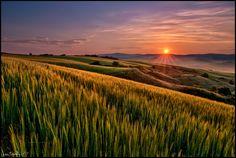 tutta l'Italia, Asciano, alba