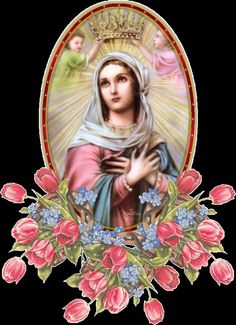 α JESUS NUESTRO SALVADOR Ω: María Reina de todo lo creado