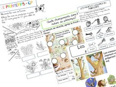 LE PRINTEMPS - CP French Teaching Resources, Teaching French, Core French, French Class, Spring Activities, Book Activities, Weather Calendar, French Education, French Immersion