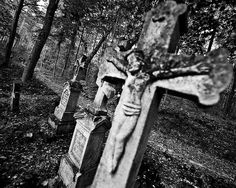 Old cementary, Roztocze, Poland    Old cementary.    Comments and faves