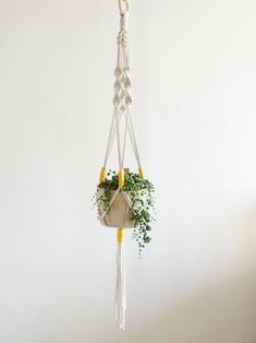 Tutorial and materials, for wrap plant hanger kit. Gift idea for beginners. Color Secundario, Boho Life, Wooden Hoop, Secondary Color, Plant Holders, Hanging Plants, Diy Kits, Plant Hanger, Backdrops