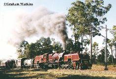 "Queensland Government Railways - Class ""Beyer Garratt"", 1009(BP 7349/1951)passes the Glasshouse Mountains as it returns to Brisbane from Yandina on a SunSteam Tour on 9 May 1998. (Photo: Graham Watkins)"