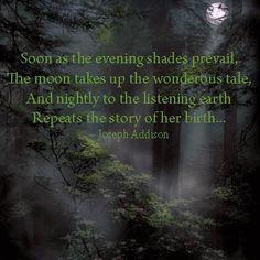 13 Best Poems Images Poems Nature Poem Moon Poems