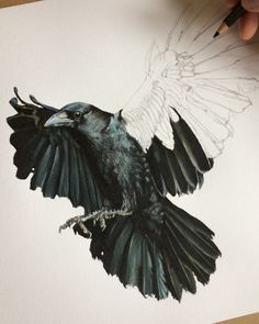 Witch Painting, Bee Painting, Grey Ink Tattoos, Crow Tattoos, Phoenix Tattoos, Ear Tattoos, Crows Drawing, Worm Drawing, Rabe Tattoo