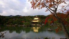 Temple du Pavillon d'or (Kinkaku-ji) (Kyoto) - TripAdvisor Kyoto, Temples, Trip Advisor, Attraction, River, Outdoor, Deck Gazebo, Outdoors