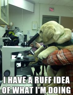 Submitted by: (via Cambro)   Tagged: dogs , ruff , science , caption   Share on Facebook