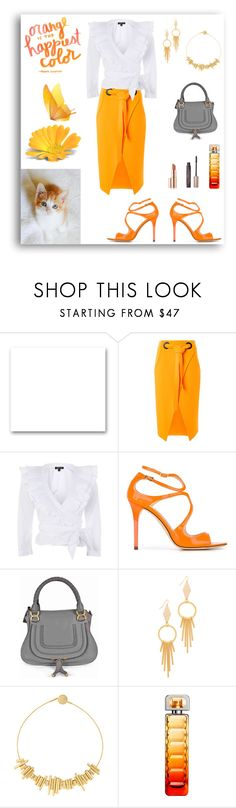 """""""Orange is the Happiest Color"""" by rboowybe ❤ liked on Polyvore featuring St. John, Topshop, Jimmy Choo, Chloé, Vanessa Mooney, Paula Mendoza, Pantone and HUGO"""