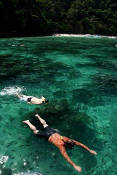 Snorkeling at Phi Phi. Lots of amazing things to see.