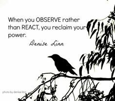 When you OBSERVE rather than REACT, you reclaim your power. Denise Linn Train your brain. It takes practice ; Great Quotes, Quotes To Live By, Inspirational Quotes, Daily Quotes, Random Quotes, Awesome Quotes, Words Quotes, Wise Words, Sayings