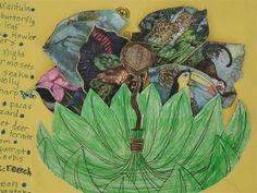 love this rainforest lapbook