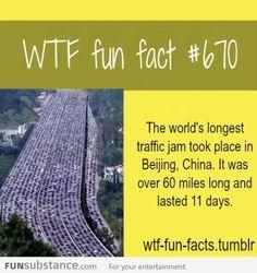 fun facts - Taringa!
