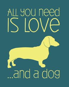 All you need is Love... And a dog #doxie #Dachshund. How convenient that one will give you the other.