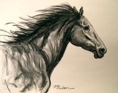 Paintings by Theresa Paden: Charcoal Horse Drawing, Running Free by Theresa Paden