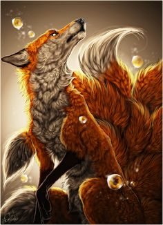 9 tailed fox.
