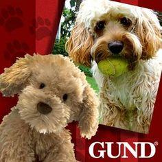 Gund Top Dog Contest!
