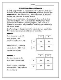 Printables. Introduction To Genetics Worksheet. Messygracebook ...