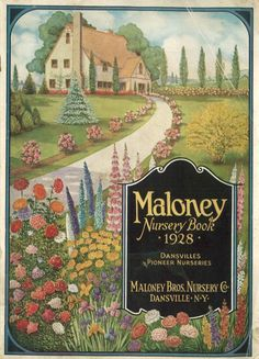 Maloney Nursery Book, 1928. Shows a nice sample, and color pictures, of their plants available in 1928. (Pretty cover, too.)