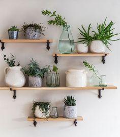 Box Shelves – Best Home Plants Cheap Home Decor, Diy Home Decor, Wall Shelf Decor, Plant Wall Decor, Book Wall Shelf, Corner Plant Shelf, Small Wall Shelf, Box Shelves, Plants On Shelves
