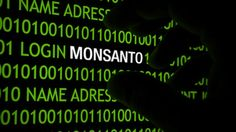 """Monsanto Found Guilty of Chemical Poisoning in Landmark Case - 'According to the U.S. Environmental Protection Agency (EPA), exposure to alachlor can cause damage to the liver, kidneys, spleen, and eyes, and may lead to the development of anemia and even cancer. The EPA apparently views alachlor as so dangerous, in fact, that the agency has set the maximum contaminant level goals (MCLG) for alachlor to zero in order to """"prevent potential health problems."""" '"""
