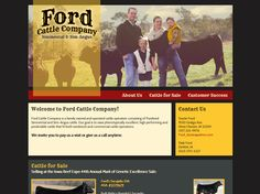 Ford Cattle Company, website design, grey, yellow, tan and red website.