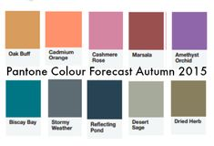 Pantone - Autumn/Winter 2015. universal color: Biscay Bay. cool: Stormy Weather & Reflecting Pond. warm: Desert Sage, Dried Herb & Oak Buff.