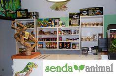 #TiendaDeLaSemana! Os presentamos a los amigos de Senda Animal, quienes acaban de abrir su tienda física en Madrid. Apasionados de los animales exóticos y su mantenimiento tienen mucho que contarte. #Productos #Mascotas