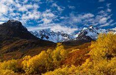 snowbird mine alaska | Fall colors along the Reed Lakes Trail, photo by Shawn Biessel