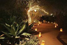 Lanterns leading the way for Italy wedding reception