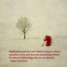 A prática da meditação não é sobre tentar jogar fora a nós mesmos e tronar-se algo melhor. É sobre fazer amizade com quem já somos.