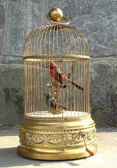 antique french birdcage music box. I have always wanted one of these