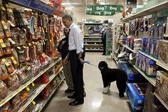 President Barack Obama and presidential dog, Bo.