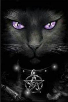 Pagan Wiccan ~another 'killer' piece of art. Wallpaper Gatos, Cat Wallpaper, Magic Cat, Black Cat Art, Black Cats, Pagan Art, Witch Cat, Wow Art, Jolie Photo