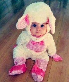 Baby lamby